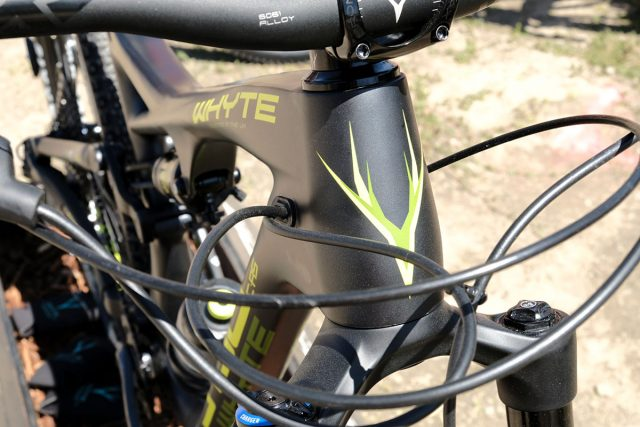 seaotter2017-_whyte005