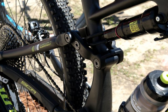 seaotter2017-_whyte006
