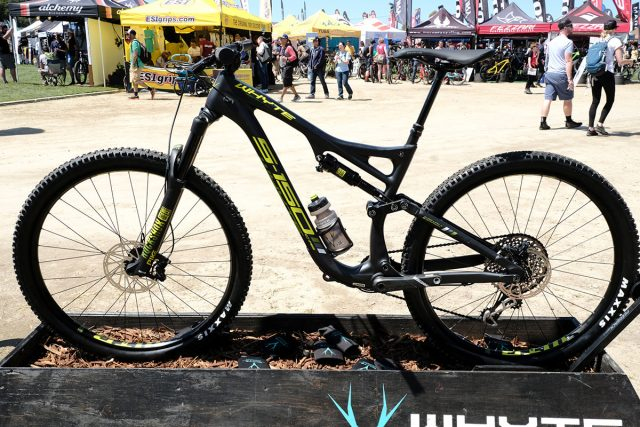 seaotter2017-_whyte012