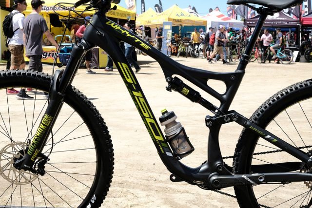 seaotter2017-_whyte013